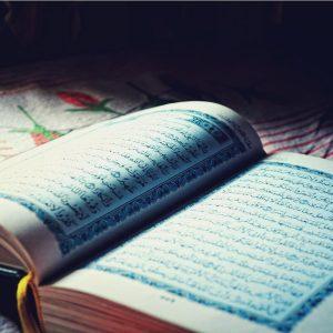 Meditatii Araba Avansat